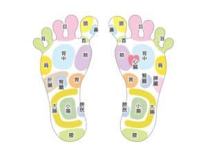 足の反射区リフレクソロジー
